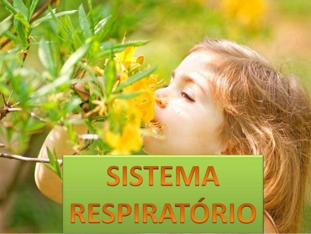 Por que respiramos?  Precisamos de oxigênio para  retirar a energia dos  alimentos.
