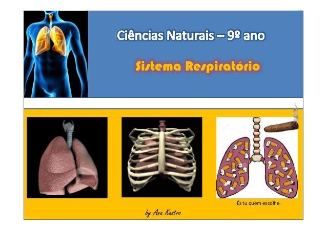 Sistema Respiratório Sistema Respiratório by Ana Kastroby Ana Kastroby Ana Kastro És tu quem escolhe.