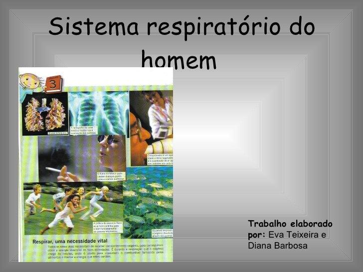 Sistema respiratório do homem   Trabalho elaborado por:  Eva Teixeira e Diana Barbosa