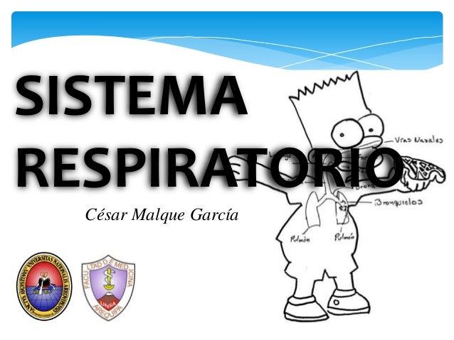 SISTEMARESPIRATORIO  César Malque García