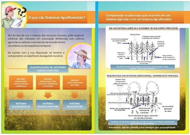 apostila Sistemas agroflorestais no semiarido brasileiro Slide 2