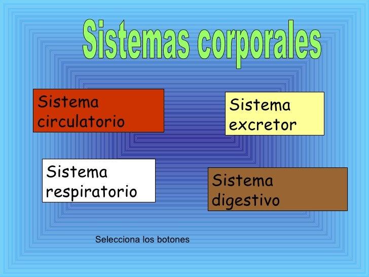 Sistemas Corporales Diap. 9