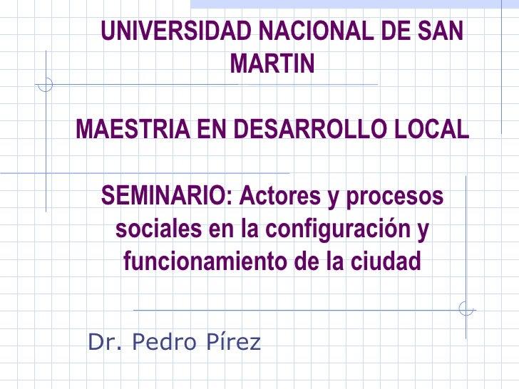 UNIVERSIDAD NACIONAL DE SAN MARTIN MAESTRIA EN DESARROLLO LOCAL SEMINARIO: Actores y procesos sociales en la configuración...