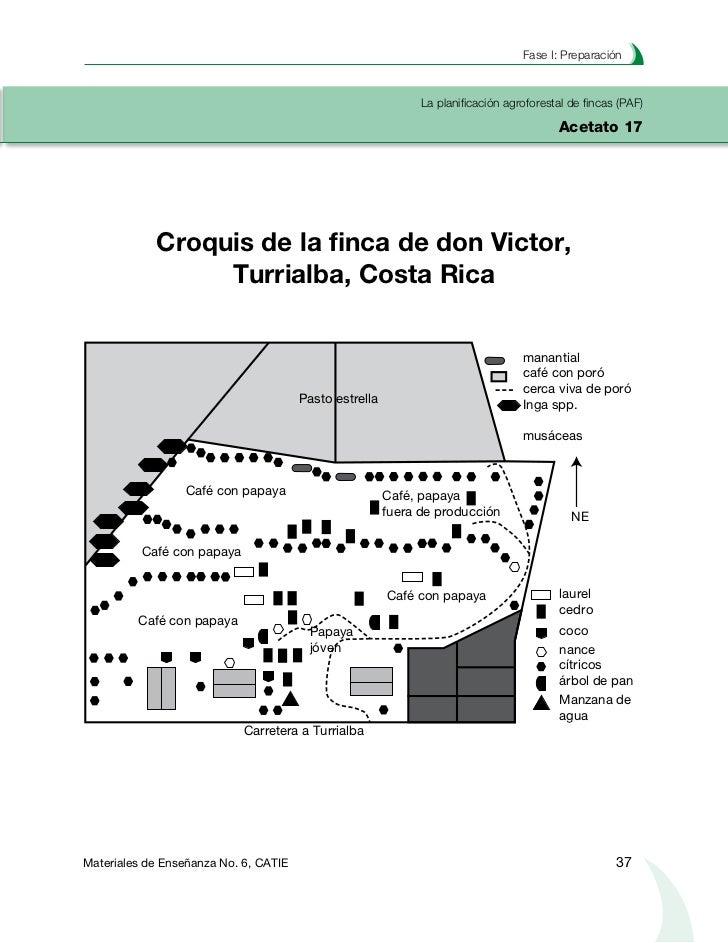 Planificación agroforestal de fincasLa planificación agroforestal de fincas (PAF)Acetato 18  Plantaciones lineales Finca V...