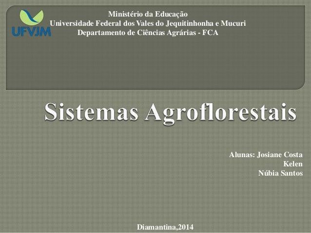 Alunas: Josiane Costa Kelen Núbia Santos Diamantina,2014 Ministério da Educação Universidade Federal dos Vales do Jequitin...