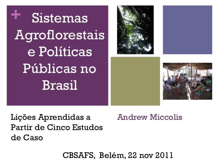 + SistemasAgroflorestais  e Políticas Públicas no    BrasilLições Aprendidas a       Andrew MiccolisPartir de Cinco Estudo...