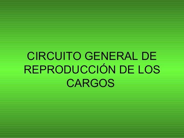 CIRCUITO GENERAL DE REPRODUCCIÓN DE LOS CARGOS