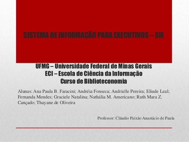 SISTEMA DE INFORMAÇÃO PARA EXECUTIVOS – SIE UFMG – Universidade Federal de Minas Gerais ECI – Escola de Ciência da Informa...