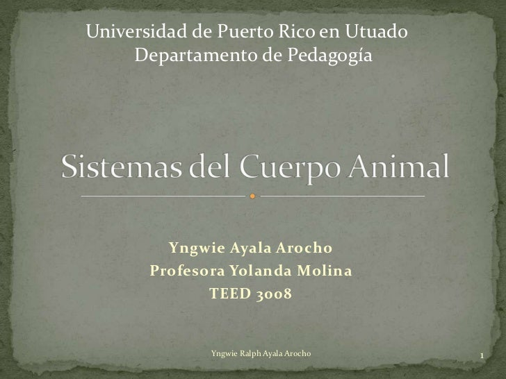 Universidad de Puerto Rico en Utuado     Departamento de Pedagogía         Yngwie Ayala Arocho       Profesora Yolanda Mol...