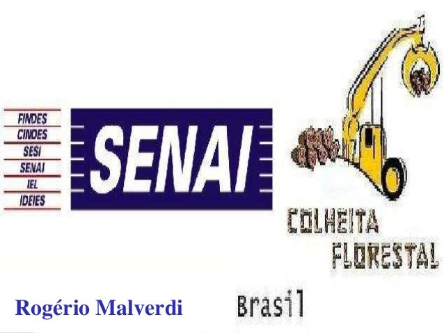 Rogério Malverdi