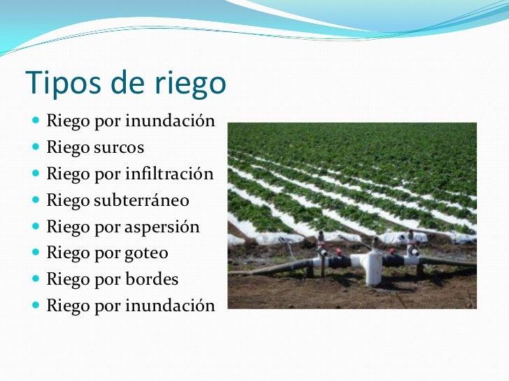 Proyecto de sistema de riego por goteo pdf