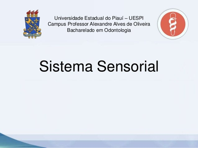 Universidade Estadual do Piauí – UESPI Campus Professor Alexandre Alves de Oliveira Bacharelado em Odontologia  Sistema Se...