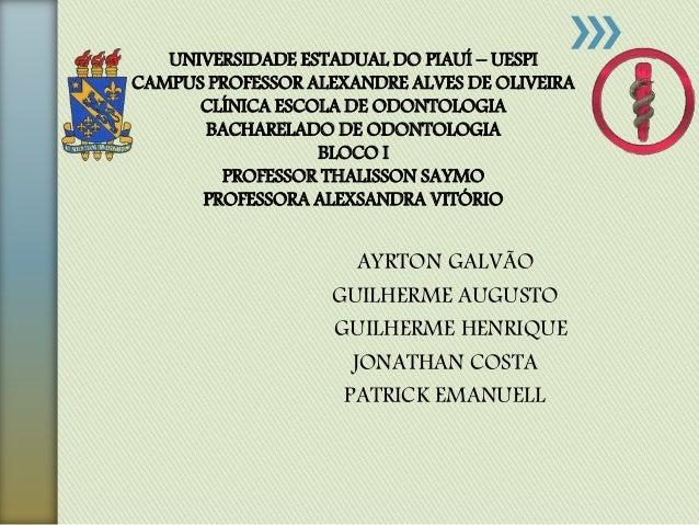 AYRTON GALVÃO GUILHERME AUGUSTO GUILHERME HENRIQUE JONATHAN COSTA PATRICK EMANUELL UNIVERSIDADE ESTADUAL DO PIAUÍ – UESPI ...