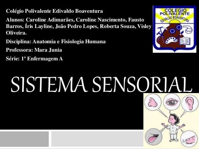 SISTEMA SENSORIAL Colégio Polivalente Edivaldo Boaventura Alunos: Caroline Adimarães, Caroline Nascimento, Fausto Barros, ...