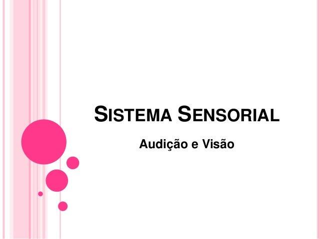 Sistema sensorial   fisiologia Slide 2
