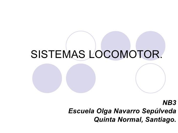 SISTEMAS LOCOMOTOR.                                NB3     Escuela Olga Navarro Sepúlveda            Quinta Normal, Santia...