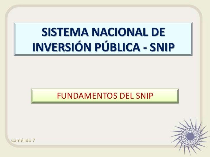 SISTEMA NACIONAL DE        INVERSIÓN PÚBLICA - SNIP             FUNDAMENTOS DEL SNIPCamélido 7