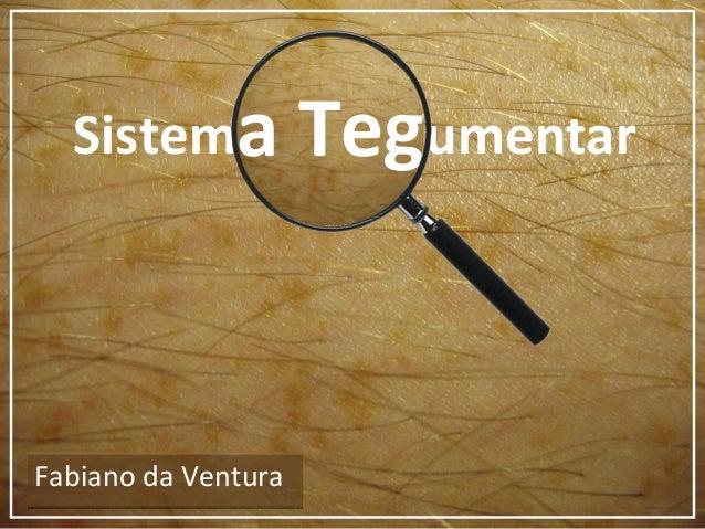 Sistema TegumentarFabiano da VenturaFabiano da Venturaa Teg