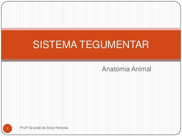 Anatomia AnimalSISTEMA TEGUMENTAR1 Profª Gracieli da Silva Henicka
