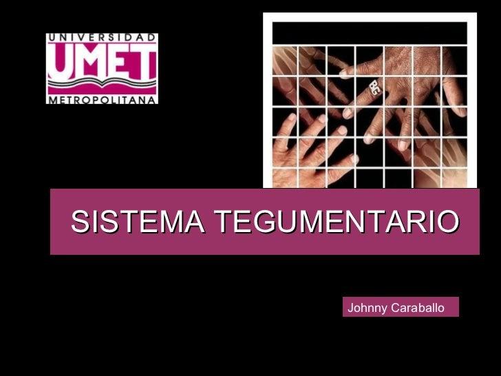 SISTEMA TEGUMENTARIO Johnny Caraballo