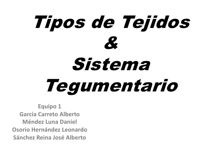 Tipos de Tejidos             &          Sistema       Tegumentario         Equipo 1  García Carreto Alberto   Méndez Luna ...