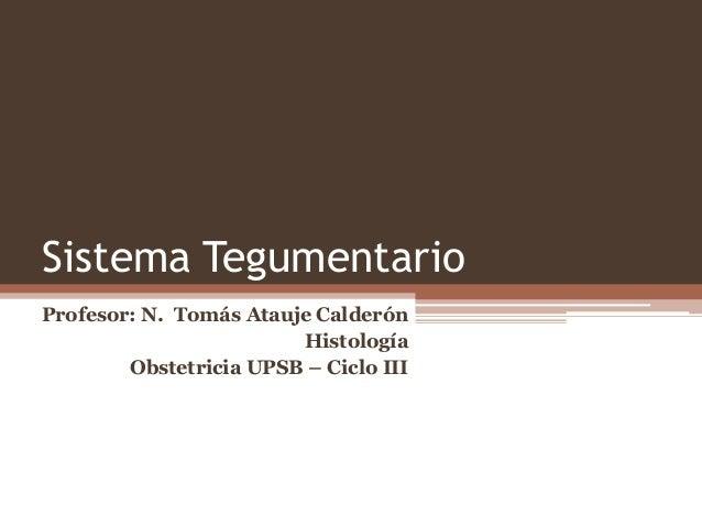 Sistema Tegumentario Profesor: N. Tomás Atauje Calderón Histología Obstetricia UPSB – Ciclo III