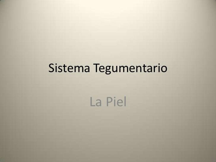 Sistema Tegumentario I