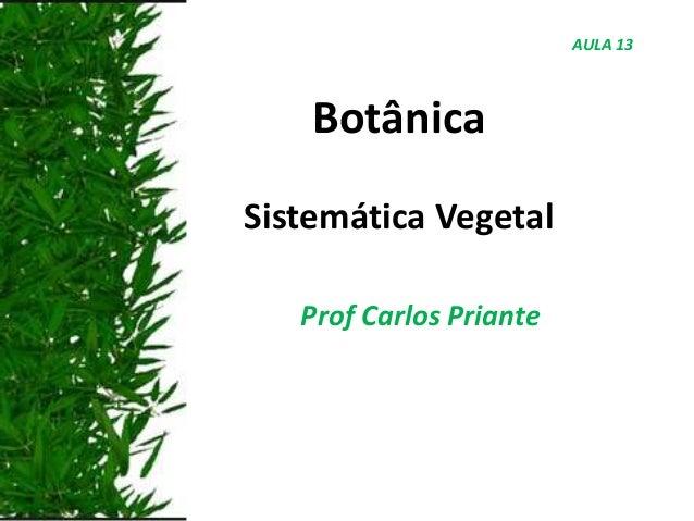Botânica Sistemática Vegetal Prof Carlos Priante AULA 13