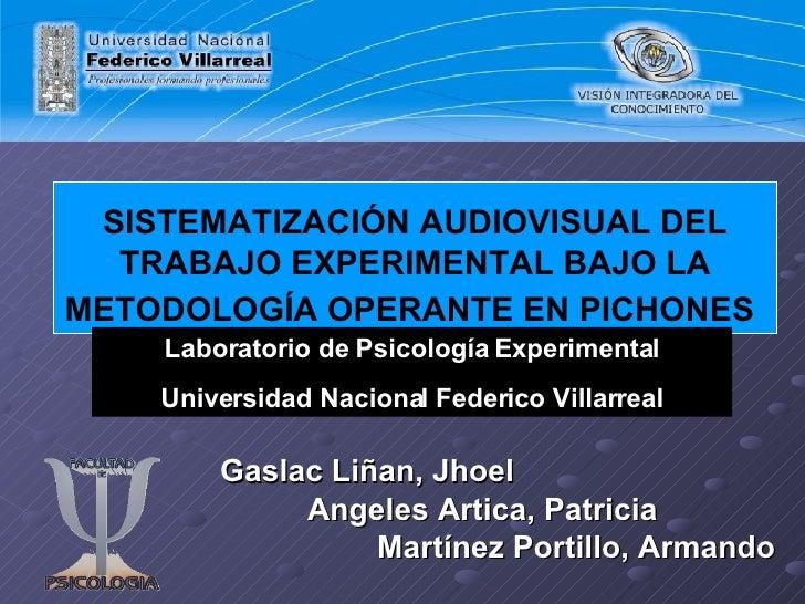 SISTEMATIZACIÓN AUDIOVISUAL DEL TRABAJO EXPERIMENTAL BAJO LA METODOLOGÍA OPERANTE EN PICHONES   Gaslac Liñan, Jhoel Angele...