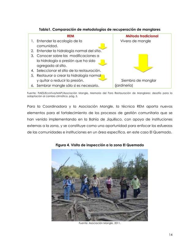 Tabla1. Comparación de metodologías de recuperación de manglares                           REM                            ...