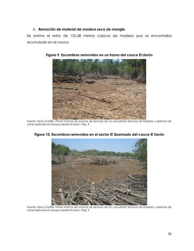 A. Remoción de material de madera seca de mangle.Se estima el retiro de 125.38 metros cúbicos de madera que se encontrabaa...