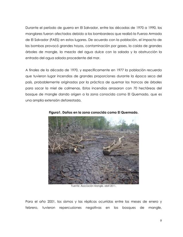 Durante el período de guerra en El Salvador, entre las décadas de 1970 a 1990, losmanglares fueron afectados debido a los ...