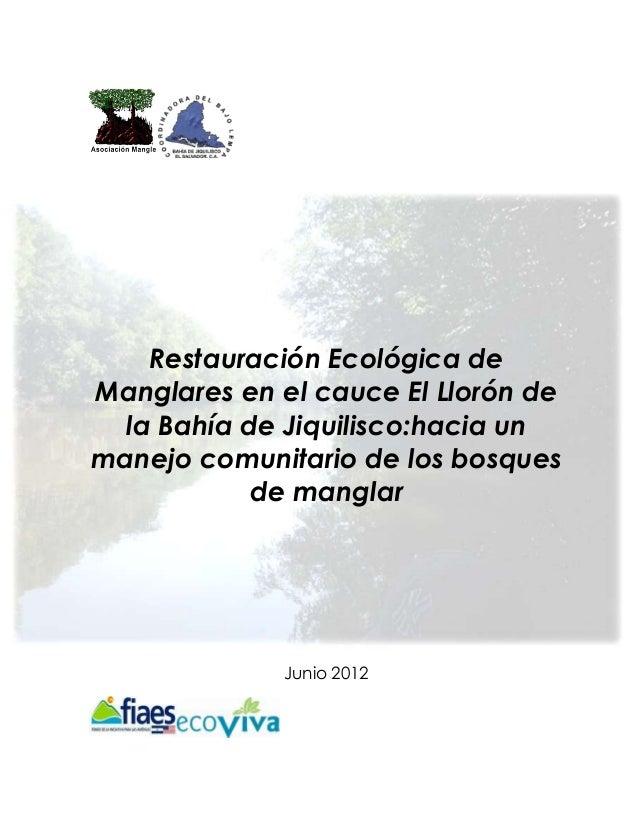 Restauración Ecológica deManglares en el cauce El Llorón de  la Bahía de Jiquilisco:hacia unmanejo comunitario de los bosq...