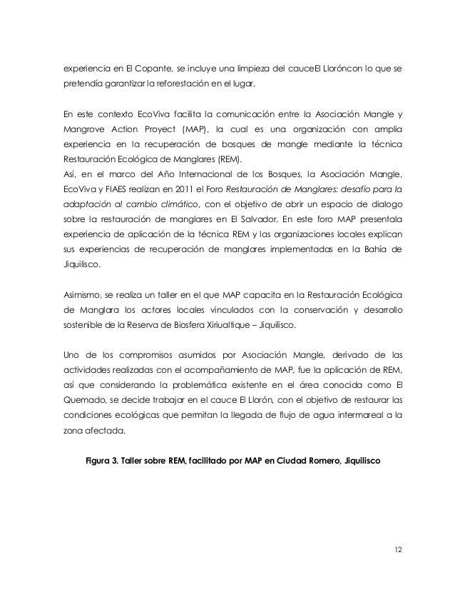 experiencia en El Copante, se incluye una limpieza del cauceEl Lloróncon lo que sepretendía garantizar la reforestación en...