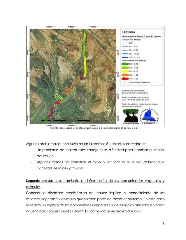 Fuente: José María Argueta, Diagnóstico biofísico del canal El Llorón, pág. 4.Algunos problemas que se tuvieron en la real...