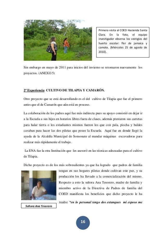 16 Sin embargo en mayo de 2011 para inicios del invierno se retomaron nuevamente los proyectos. (ANEXO 5) 2ª Experiencia: ...