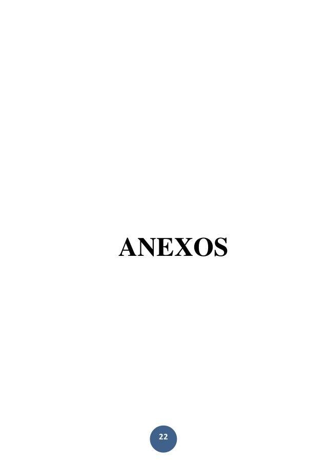 22 ANEXOS