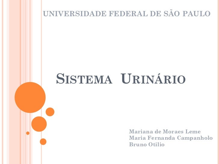 UNIVERSIDADE FEDERAL DE SÃO PAULO  SISTEMA URINÁRIO                Mariana de Moraes Leme                Maria Fernanda Ca...