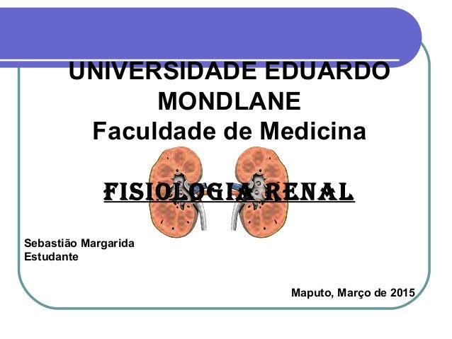 Sebastião Margarida Estudante Maputo, Março de 2015 UNIVERSIDADE EDUARDO MONDLANE Faculdade de Medicina FISIOLOGIA RENAL