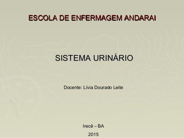 ESCOLA DE ENFERMAGEM ANDARAIESCOLA DE ENFERMAGEM ANDARAI SISTEMA URINÁRIOSISTEMA URINÁRIO Docente: Lívia Dourado Leite Ire...