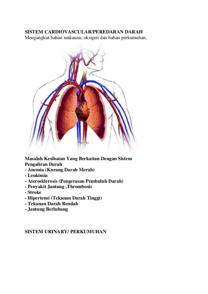 SISTEM CARDIOVASCULAR/PEREDARAN DARAHMengangkut bahan makanan, oksigen dan bahan perkumuhan.Masalah Kesihatan Yang Berkait...