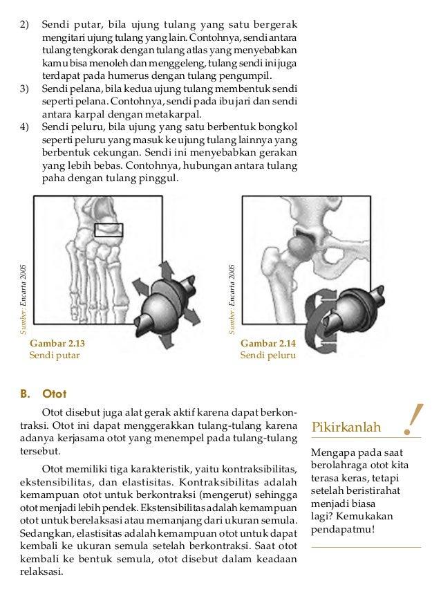 Ilmu Pengetahuan Alam untuk SMP/MTs Kelas VIII262) Sendi putar, bila ujung tulang yang satu bergerakmengitariujungtulangya...