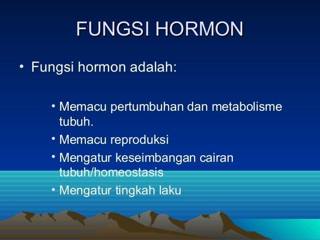 Sistem hormon 290913
