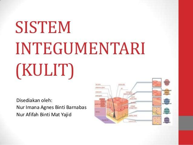 SISTEMINTEGUMENTARI(KULIT)Disediakan oleh:Nur Imana Agnes Binti BarnabasNur Afifah Binti Mat Yajid