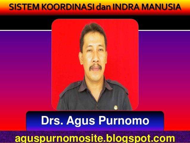 SISTEM KOORDINASI dan INDRA MANUSIA      Drs. Agus Purnomo aguspurnomosite.blogspot.com