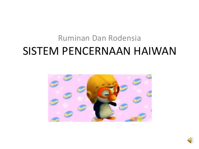SISTEM PENCERNAAN HAIWAN Ruminan Dan Rodensia