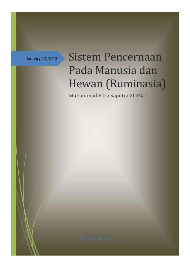 January 12, 2013 Sistem PencernaanPada Manusia danHewan (Ruminasia)Muhammad Fitra Saputra XI IPA 1Muh Fitra SaputraSMAN 6 ...