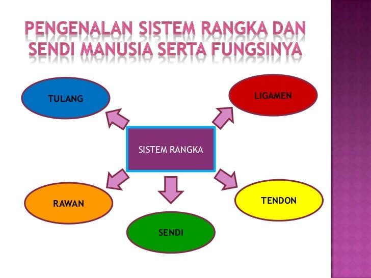 Sistem rangka Slide 3