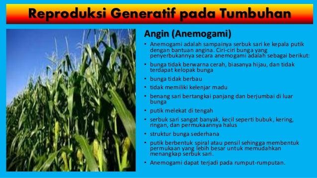Sistem Reproduksi Tumbuhan Dan Hewan