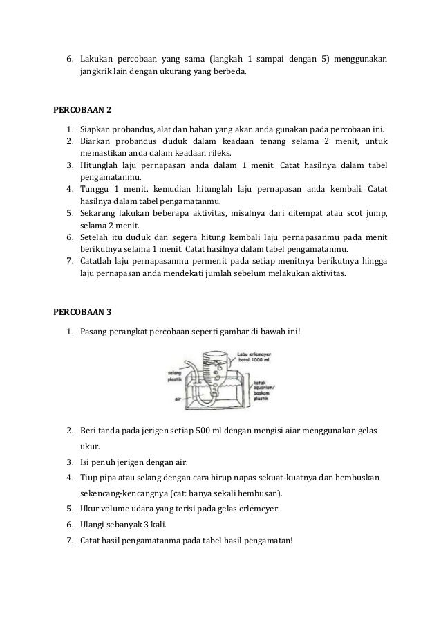 Laporan Praktikum Sistem Respirasi